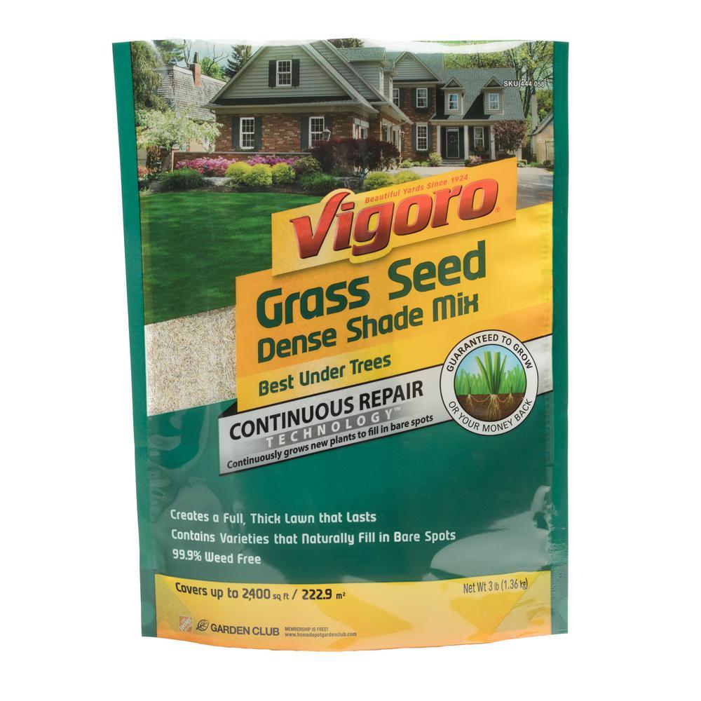 vigoro grass seed instructions