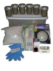 mega you grow mushroom kit instructions