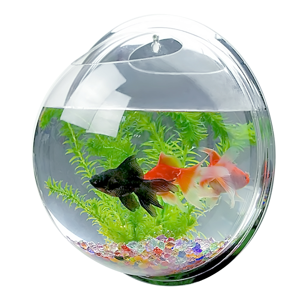 wall mounted fish tank instructions