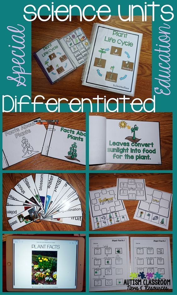 types of differentiated instruction