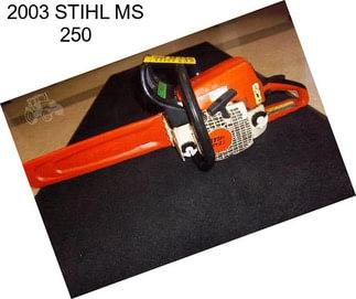 stihl ms170 starting instructions