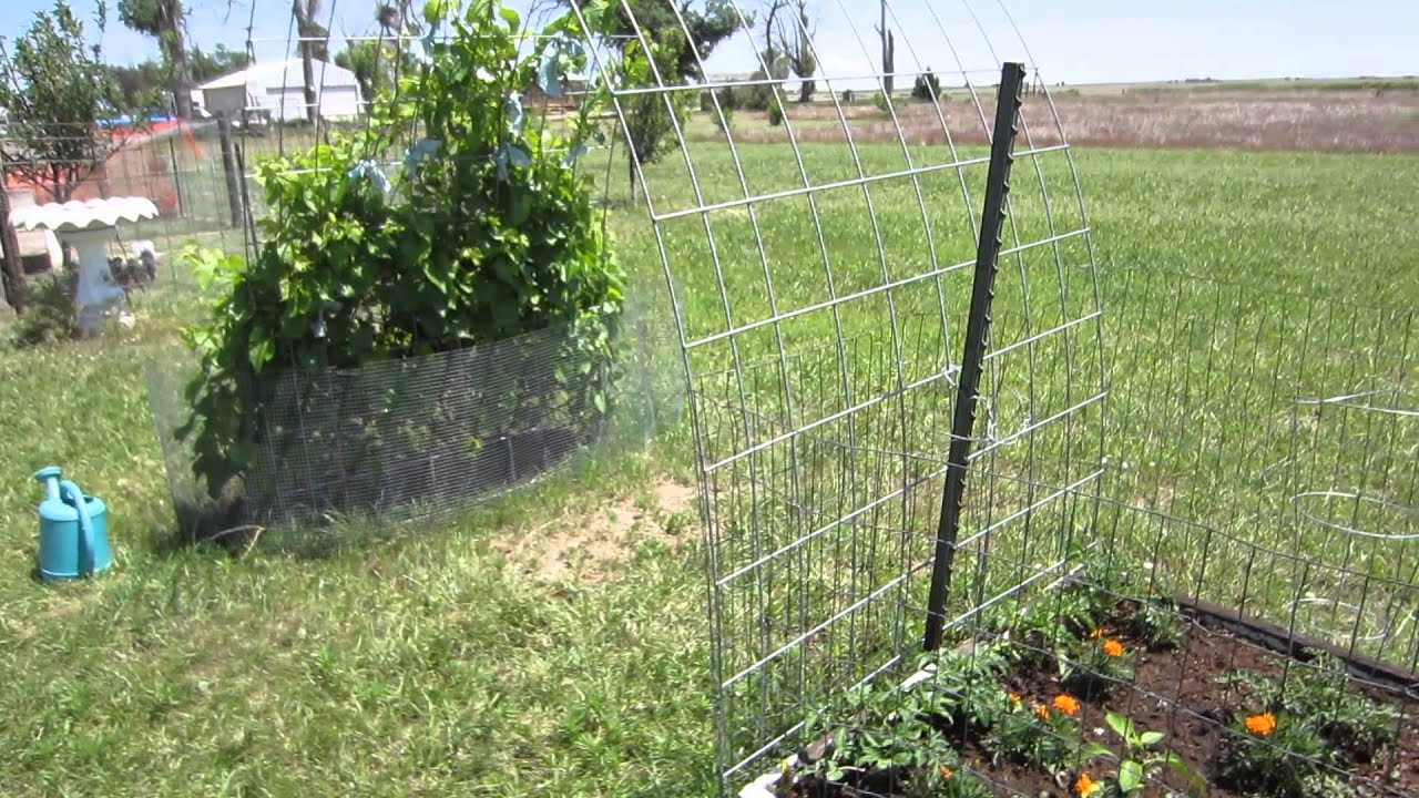 square foot gardening trellis instructions