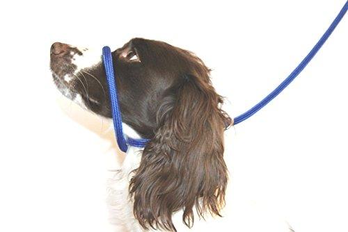 braided dog toy instructions