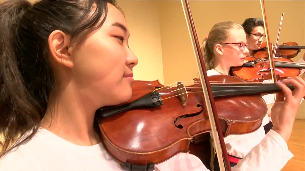 suzuki method of music instruction