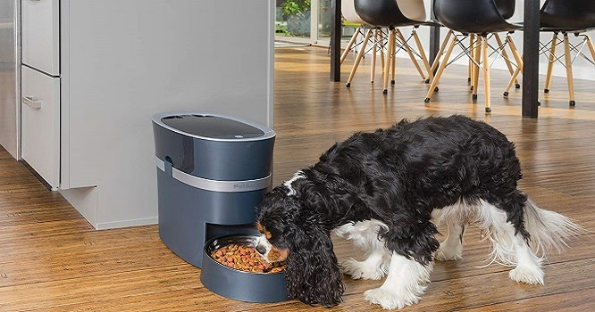 petmate automatic feeder instructions