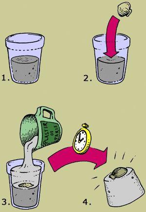 plaster of paris instructions