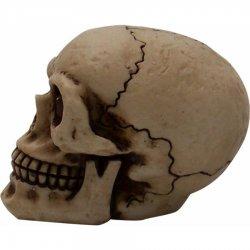 johnny the skull instructions