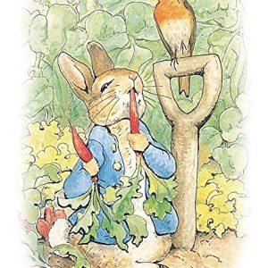 peter rabbit radish board game instructions