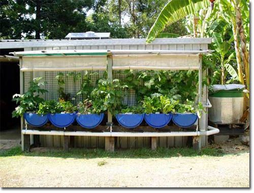 indy 23 fish garden plan & building instruction set
