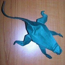 easy origami lizard instructions