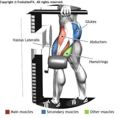 multi hip machine instructions