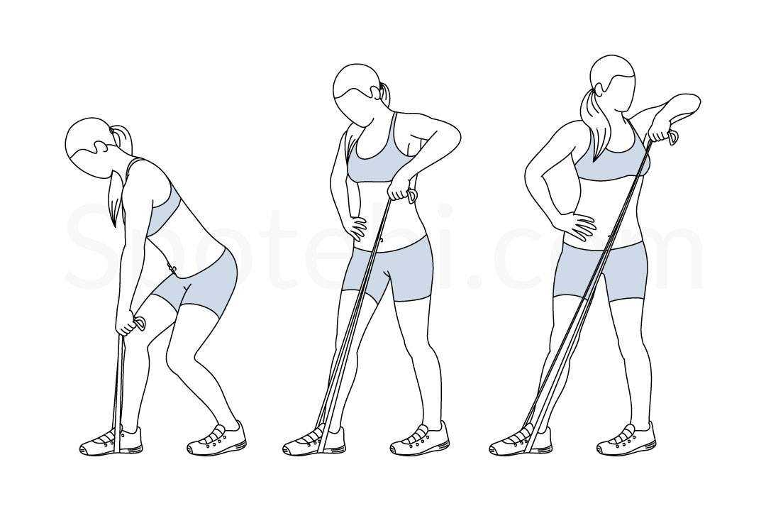 exercise pictures and instructions