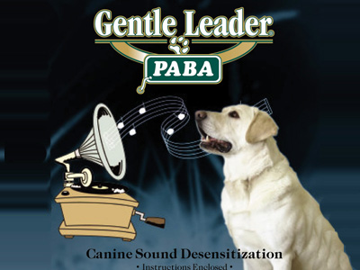 gentle leader instructions video
