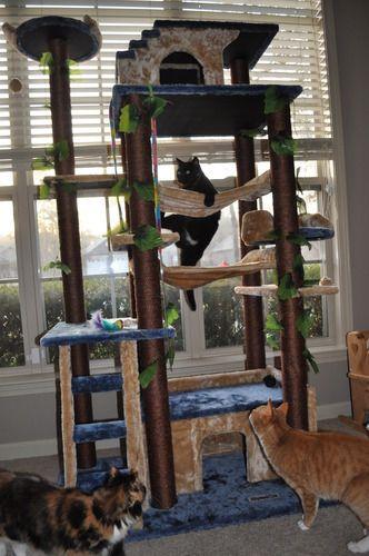 go pet club cat tree f2040 instructions