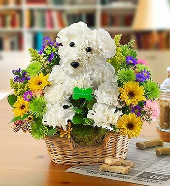 puppy flower arrangement instructions