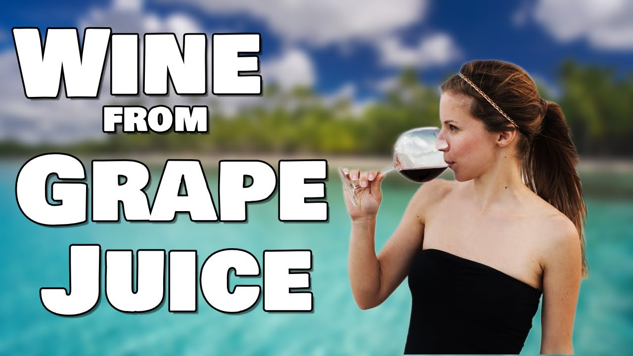 wine making instructions from grapes