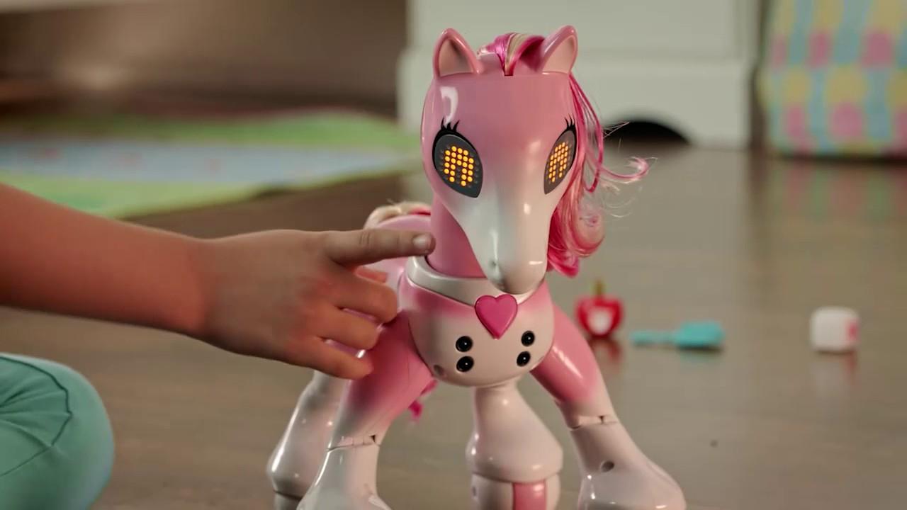 zoomer show pony instructions